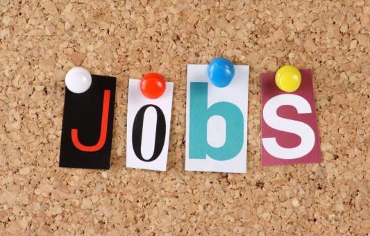 Які професії найбільш затребувані в Тернополі?