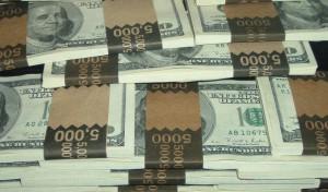 20 000 доларів знайшов на городі робітник з Тернопілля